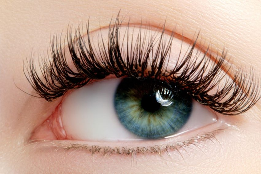 Best Eyelash Growth Serum That Can Work